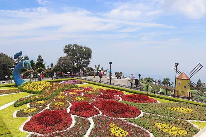 SunWorld-giardini-fioriti